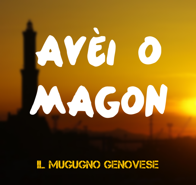 aveimagon