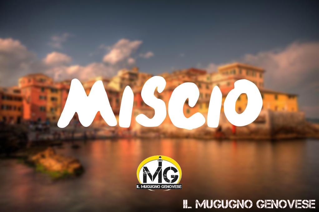 miscio+