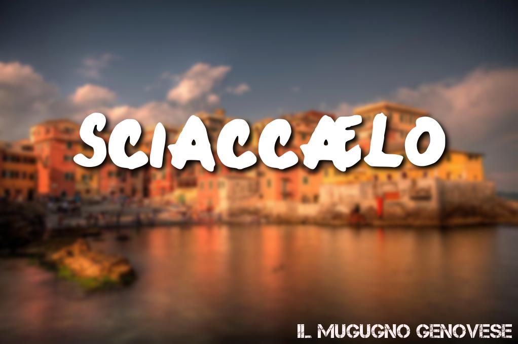 sciaccaelo