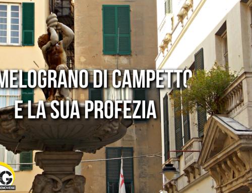 Piazza Campetto, il Melograno e la sua Profezia!