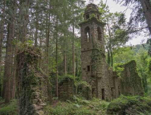 La finestra sul Medioevo 🏴 San Martino di Liciorno