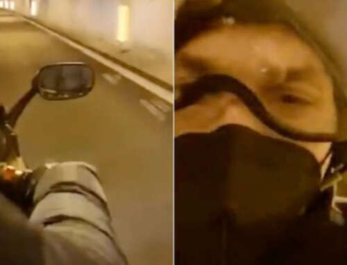 Ibra è davvero salito in moto per andare a Sanremo? Si, lo conferma il motociclista 😂
